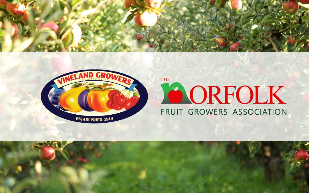 Vineland Growers' Co-operative Limited and The Norfolk Fruit Growers Association announce marketing agreement